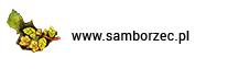 www.samborzec.pl